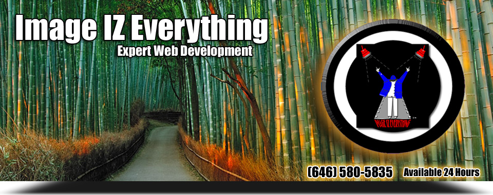 Image IZ Everything (Expert Web Development)